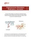 Organizaciones_Bimodales